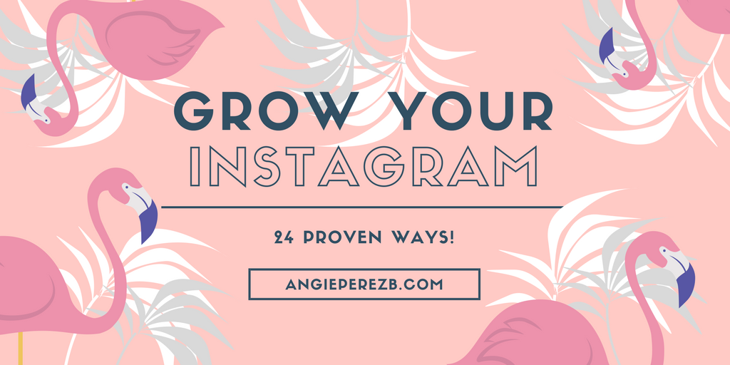 How To Grow Instagram Followers Fast. Strategies.