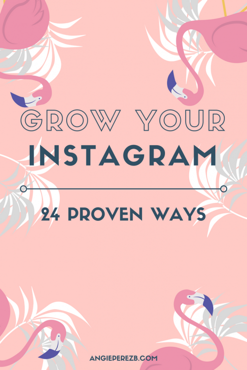 How I Gained 200+ New Instagram Followers In A Week (beating the new algorithm!)